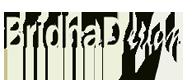 BridhaDesign